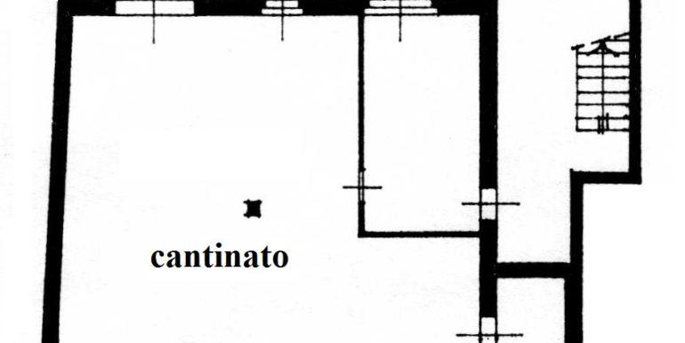 Cantinato